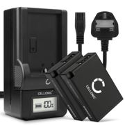 2x Replacement LP-E17 Battery Pack and LCD Smart Charger Set for Canon EOS 850D Camera