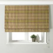 Aviemore Thistle Roman Blind Brown, Green and Purple