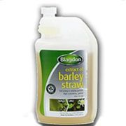 Blagdon Barley Straw Extract 250ml