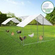 Chicken Run 4m x 8m x 2m