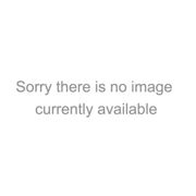 Flamingos Duvet Set by Sophie Allport Pink Single
