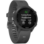 Garmin Forerunner 245 - Grey