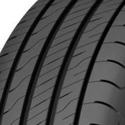 Goodyear EfficientGrip Performance 2 ( 195/55 R16 87V )