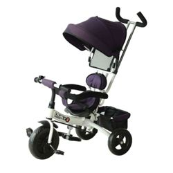 Pricehunter.co.uk - Price comparison & product search. Product image for  trikes with parent handle