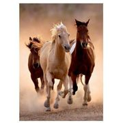 Jigsaw Puzzle - 1000 Pieces - Wild Horses Galloping