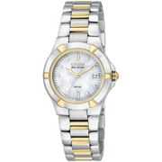 Ladies Citizen Eco-drive Ladies Wr100 Stainless Steel Watch