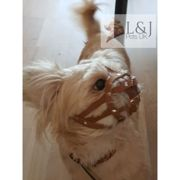 (M1, Brown) Leather Dog Muzzle for Shih Tzu and other dog's