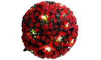 Solar Topiary Ball: Red / One