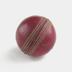 Cricket-image