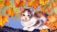 White Black Kitten Fall Tree Autumn Cat Kitty Pet Animal, 1pc Kitten Pet Animal Acrylic Diy Painting By Number Hobby Kit Home Wall Picture Decor Arts