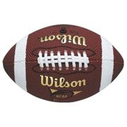 Wilson NFL Micro Size American Football Outdoor Play Training Practice Ball (2020)